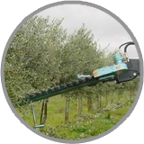 ledgard pruners imported by orchard agrimek