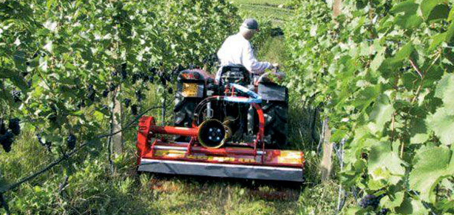seppi_m mowers distributed by orchard agrimek
