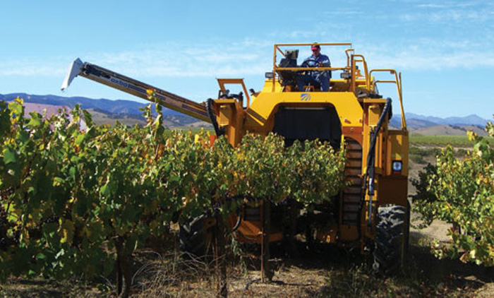 grape picker machine